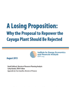 STUDY FINDS PROPOSED REPOWERING OF CAYUGA POWER PLANT FINANCIALLY UNVIABLE