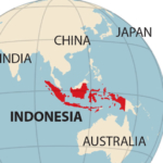 IEEFA report: Can Indonesia's coal industry survive COVID-19?