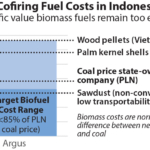 IEEFA Indonesia: Switching coal plants to PLN's biomass cofiring plan is no magic bullet