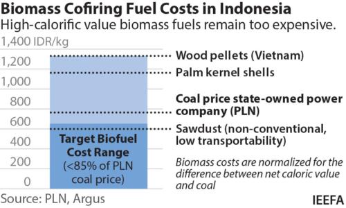 Biomass Cofiring Fuel Costs in Indonesia